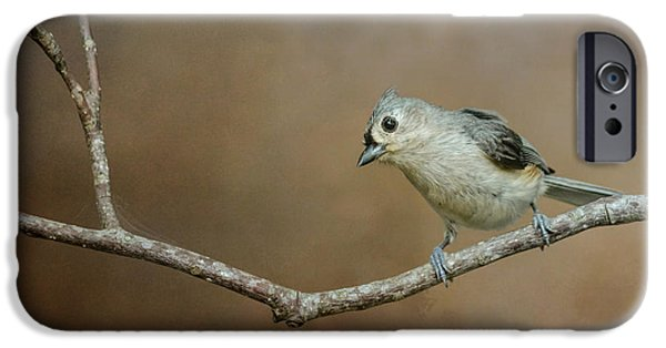 Little iPhone Cases - Visiting Tufted Titmouse iPhone Case by Jai Johnson