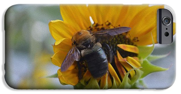 Christmas Greeting iPhone Cases - Visitor in my Garden iPhone Case by Sonali Gangane