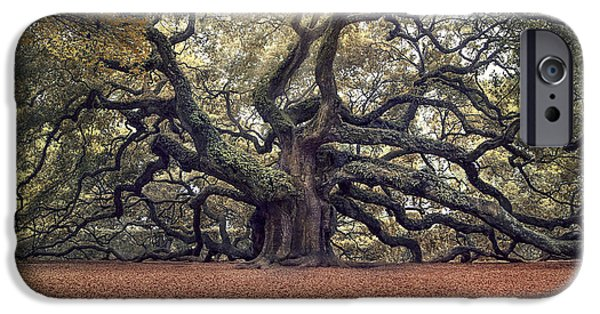 Oak Trees iPhone Cases - Voices of the Angels iPhone Case by Magda  Bognar