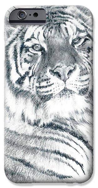 Animal Drawings iPhone Cases - Voyager iPhone Case by Barbara Keith