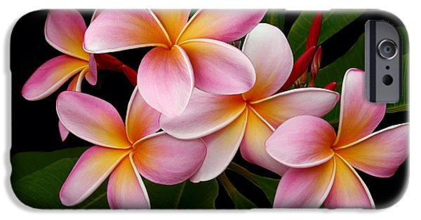 Poetic iPhone Cases - Wailua Sweet Love iPhone Case by Sharon Mau