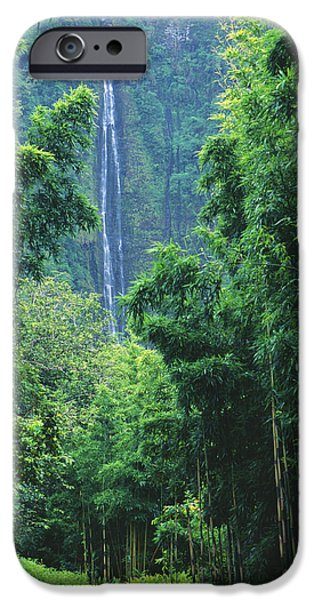 Waimoku Falls iPhone Case by Dave Fleetham - Printscapes