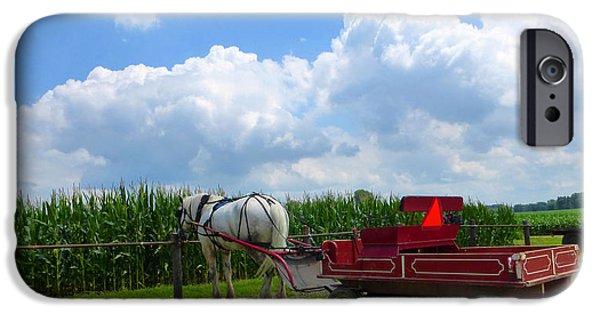 Amish Community Photographs iPhone Cases - Waiting iPhone Case by Tina M Wenger
