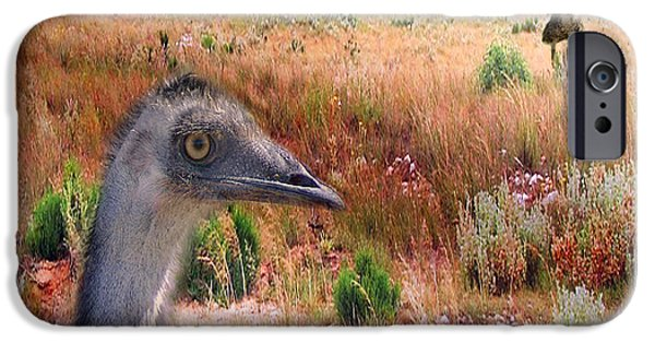 Emu iPhone Cases - Walkabout iPhone Case by Holly Kempe