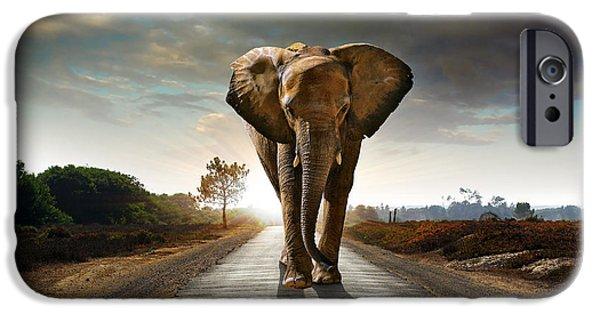 Asphalt Photographs iPhone Cases - Walking Elephant iPhone Case by Carlos Caetano