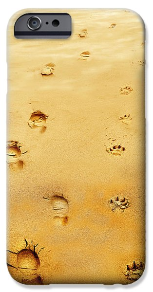 Dog Walking iPhone Cases - Walking the Dog iPhone Case by Mal Bray