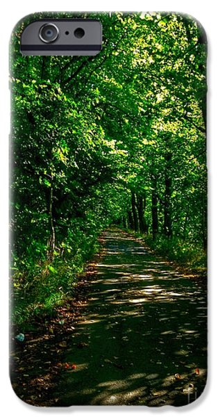 Pathway iPhone Cases - Walkway at Miller Park iPhone Case by Joan-Violet Stretch
