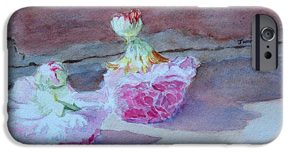 Hollyhock iPhone Cases - Wall Flowers iPhone Case by Jenny Armitage