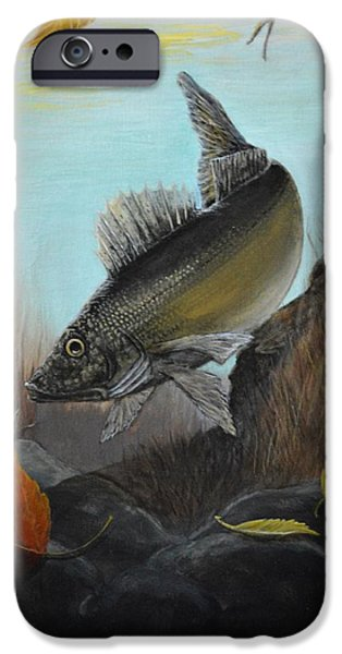 Red Rock iPhone Cases - Walleye Fall 1 iPhone Case by Kimberly Benedict