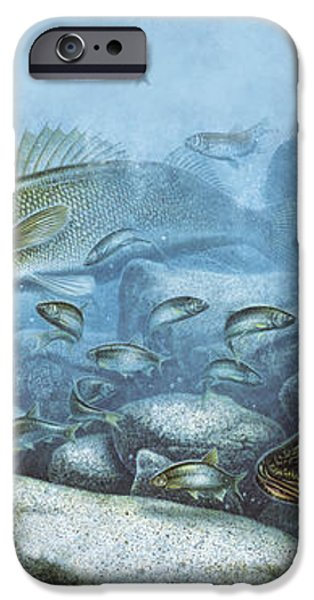 Walleye Reef iPhone Case by JQ Licensing