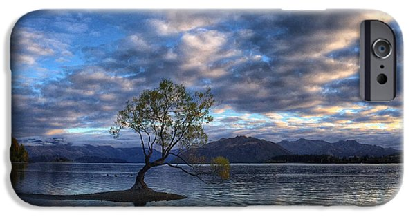 Willow Lake iPhone Cases - Wanaka Willow Sunrise iPhone Case by Victoria Porter