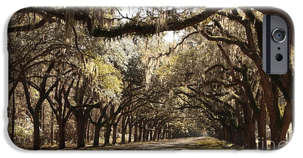 Old Country Roads Photographs iPhone Cases - Warm Southern Hospitality iPhone Case by Carol Groenen