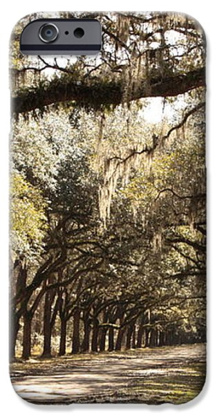 Warm Southern Hospitality iPhone Case by Carol Groenen