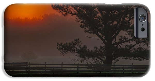Horse Tapestries - Textiles iPhone Cases - Warm Sunrise iPhone Case by James Hennis