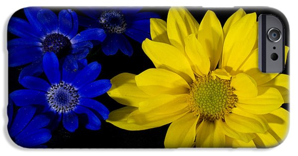 Senetti iPhone Cases - Warmth in Numbers iPhone Case by Glen  Towler