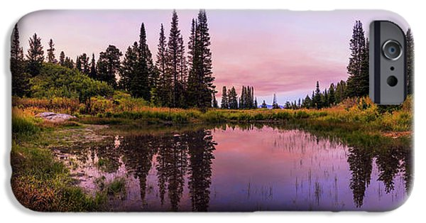 Pines iPhone Cases - Wasatch Back iPhone Case by Chad Dutson