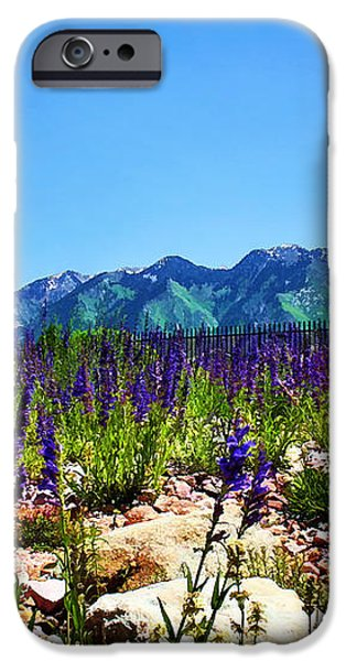 Wasatch Mountains In Spring iPhone Case by Tracie Kaska