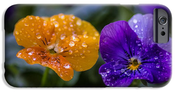 Garden iPhone Cases - Water Droplets iPhone Case by Martin Newman