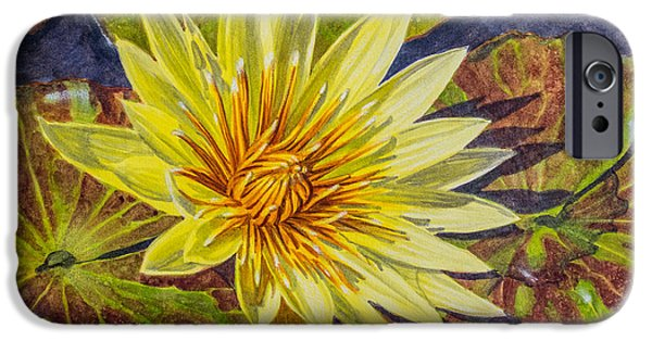 Chicago Paintings iPhone Cases - Water Lilies 2 iPhone Case by Fiona Craig