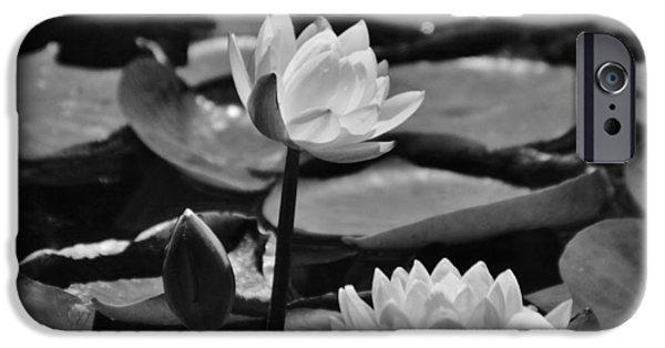 Jambalaya iPhone Cases - Water Lilies  iPhone Case by D S Images