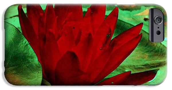 Red Abstract iPhone Cases - Water Lily  iPhone Case by Richard Ray