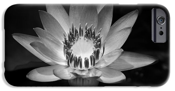 Poetic iPhone Cases - Water Lily iPhone Case by Sharon Mau
