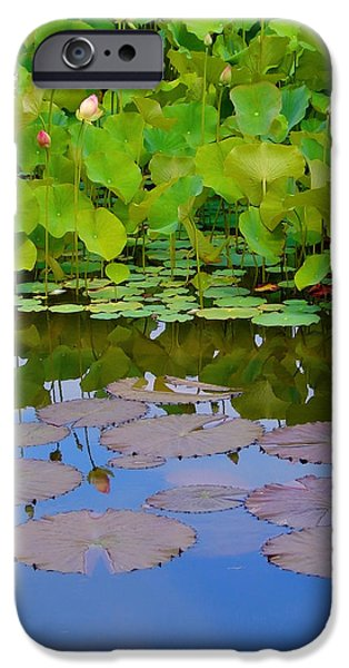 Water Lily Sky iPhone Case by Nada Frazier