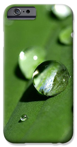 Nature Shot iPhone Cases - Waterdrops iPhone Case by Melanie Viola