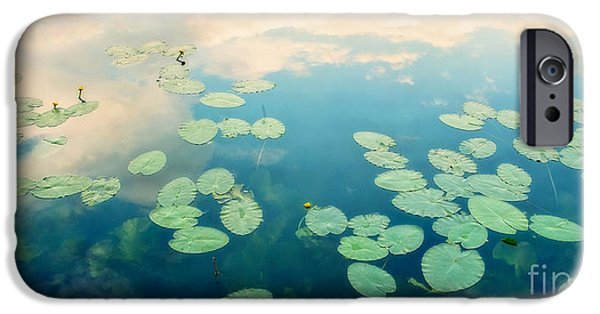 Waterlily iPhone Cases - Waterlilies Home iPhone Case by Priska Wettstein