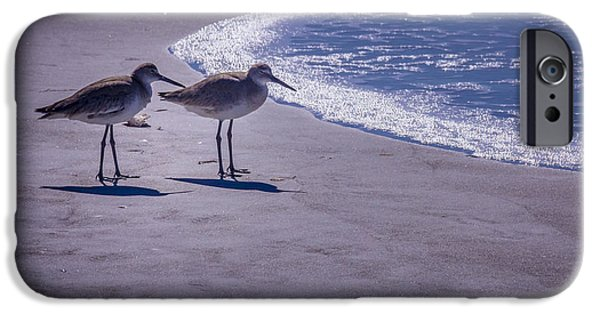 Sea Birds Photographs iPhone Cases - We Stand Together iPhone Case by Marvin Spates