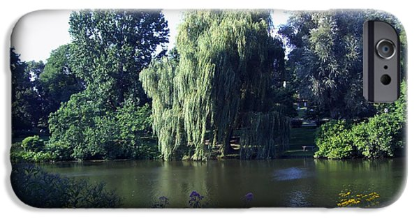 Pathway iPhone Cases - Weeping Willow at the Mount Auburn Cemetary in Cambridge MA iPhone Case by Mary Ann Weger