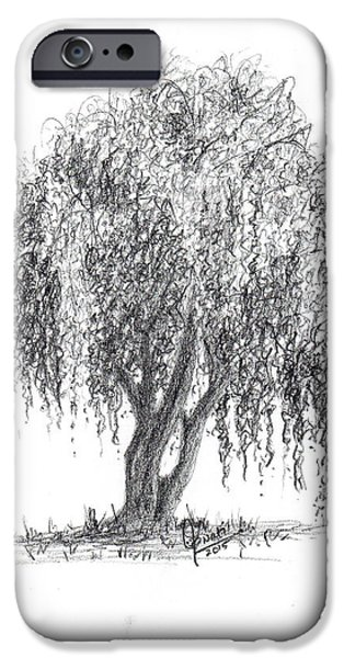 Weeping Drawings iPhone Cases - Weeping willow tree iPhone Case by Swati Singh