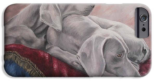 Weimaraners iPhone Cases - Weimaraner iPhone Case by Daniele Trottier