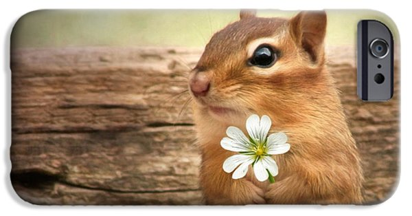 Pet iPhone Cases - Welcome Spring iPhone Case by Lori Deiter