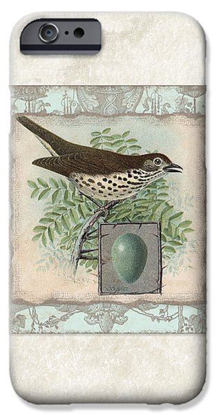 Robin iPhone Cases - Welcome to our Nest - Vintage Bird w Egg iPhone Case by Audrey Jeanne Roberts