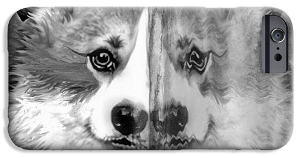Print Glass iPhone Cases - Welsh Corgi Ice Mirror iPhone Case by Kathy Kelly