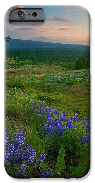 Meadow iPhone Cases - Wenas Valley Sunset iPhone Case by Mike  Dawson