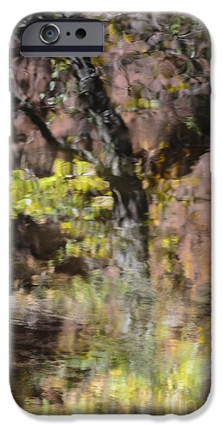 West Fork iPhone Cases - West Fork Reflection on Water iPhone Case by Tamara Becker