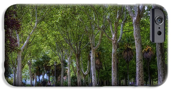 Pathway iPhone Cases - Western Park Madrid iPhone Case by Joan Carroll