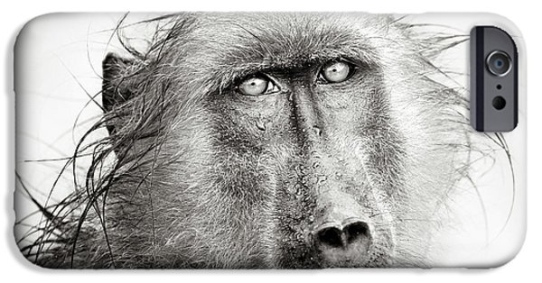 Close iPhone Cases - Wet Baboon portrait iPhone Case by Johan Swanepoel