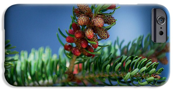 Becky Photographs iPhone Cases - #wetootellstories iPhone Case by Becky Furgason