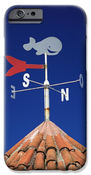 Whale weather vane iPhone Case by Gaspar Avila