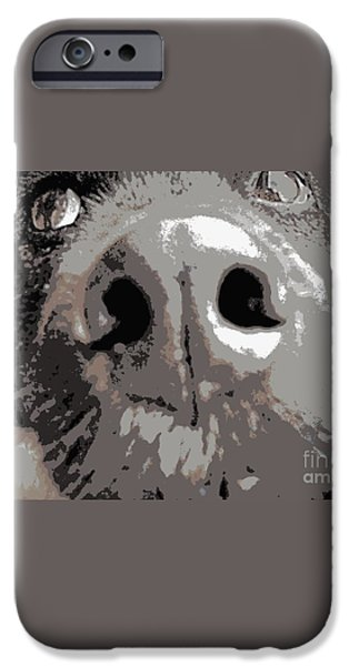 Dog Close-up Paintings iPhone Cases - What a Face iPhone Case by Angela  Fisher