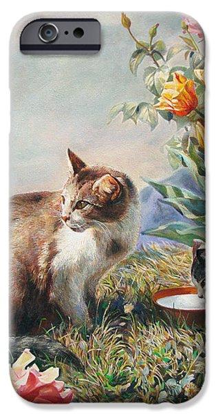 What a Girl Kitten Wants iPhone Case by Svitozar Nenyuk