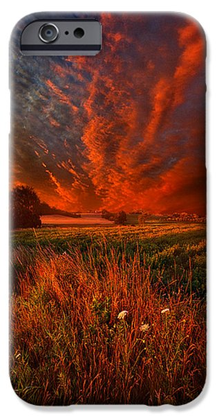 Floral Photographs iPhone Cases - What About Now iPhone Case by Phil Koch