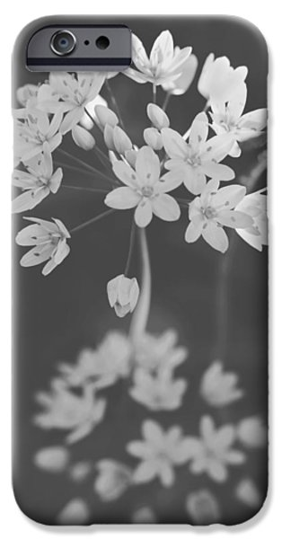 Monotone iPhone Cases - What the Heart Wants iPhone Case by Laurie Search