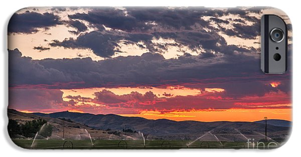 Field. Cloud iPhone Cases - Wheel Line Sunrise iPhone Case by Robert Bales