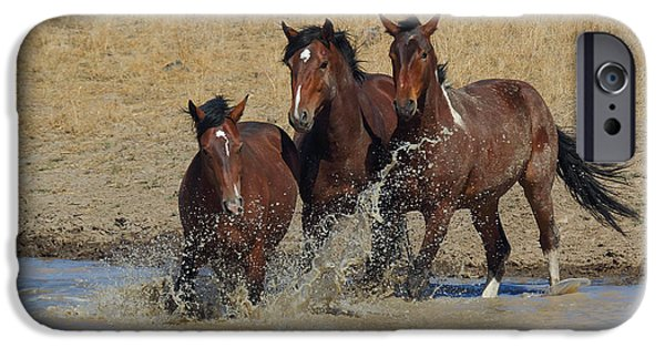 The Horse iPhone Cases - When a Horse Sees a Waterhole iPhone Case by Rod  Giffels