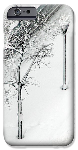 When Nature Quiets The City iPhone Case by Dana DiPasquale