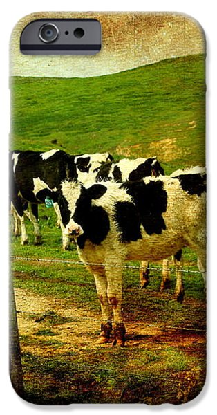 When The Cows Come Home . Photoart iPhone Case by Wingsdomain Art and Photography